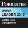 2019Q1 Master Data Management 137807 (2)